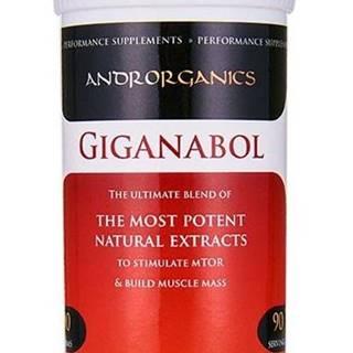 Giganabol - Androrganics 90 g