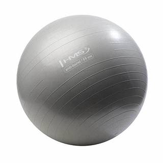 Gymnastický míč HMS YB02 55 cm šedý